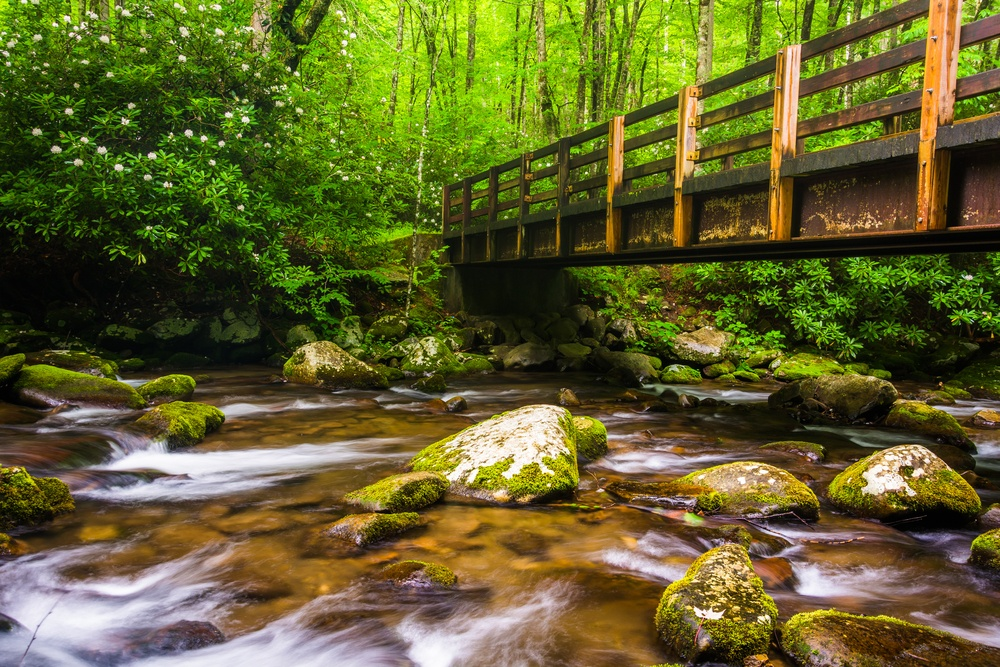 Cascades and walking bridge over the Oconaluftee River, at Great Smoky Mountains National Park, North Carolina.-1