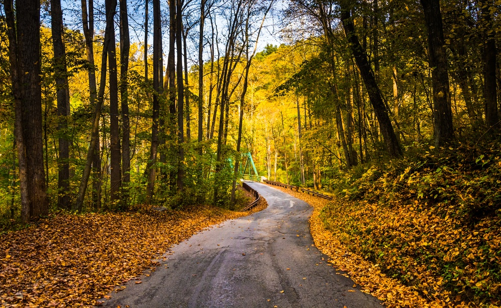 Early autumn color on a road in rural Baltimore County, Maryland